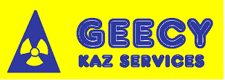 GEECY KAZ SERVICES